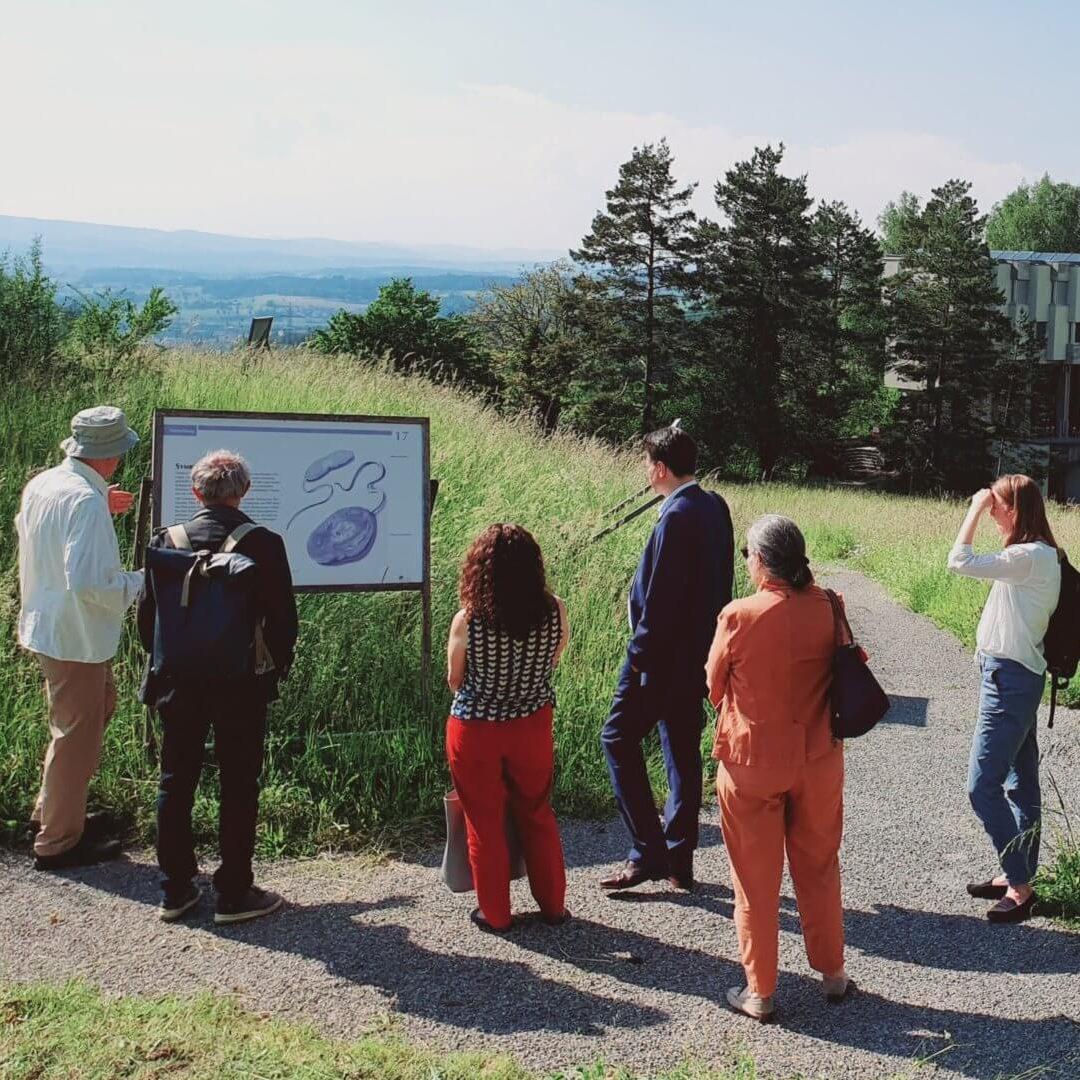 """Ausstellung """"Schritte durch die Zeit… vom Sternenstaub zu uns"""", Lassalle-Haus, 2021"""